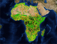 Africa Road Map - Yellows & Greens