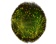 Network Graph -  Peer to Peer File Sharing Network Zoomed Out - Yellow